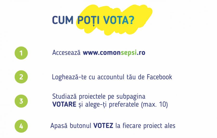 Procesul de vot