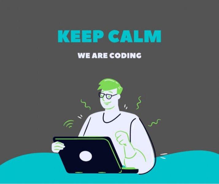 Programatorii lucrează la pagină